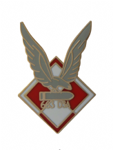 No. 663 Polish Air Observation Post Squadron Royal Air Force RAF Pin Badge